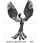 Logo Vector of a Majestic Black Phoenix Fantasy Bird Opening Its Wings and Looking Right by AtStockIllustration
