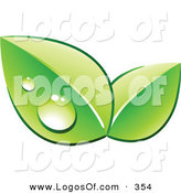 Logo Vector of a Pre-Made Logo of a Set of Green Dew Covered Leaves over Space for a Business Name and Company Slogan on White by Beboy