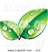 Logo Vector of a Pre-Made Logo of Organic Eco Friendly Green Leaves Wet with Dew, with Space for a Business Name and Company Slogan Below by Beboy