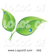 Logo Vector of a Stock Logo of a Pair of Green Leaves with Blue Dew Drops Above Space for a Company Name and Information on White by KJ Pargeter