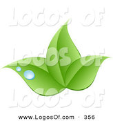 Logo Vector of a Stock Logo of a Trio of Bright Green Leaves and Blue Drops of Dew Above a Space for a Company Name and Information by KJ Pargeter