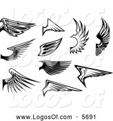 Logo Vector of Black and White Wing Logos by Vector Tradition SM