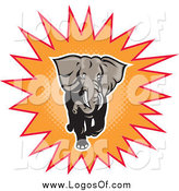 Vector Clipart of a Charging Elephant in an Orange Burst Logo by Patrimonio