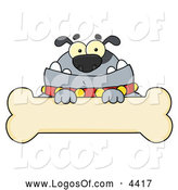 Vector Clipart of a Gray Bulldog over a Bone Sign by Hit Toon