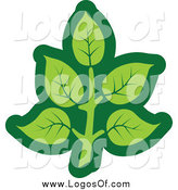 Vector Clipart of a Green Leaf Logo by Vector Tradition SM