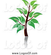 Vector Clipart of a Green Tree and Reflection Logo by Vector Tradition SM