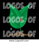 March 14th, 2014: Vector Clipart of a Ladybug on Dewy Leaves over Black by Pams Clipart