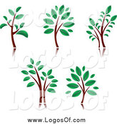 Vector Clipart of Trees with Brown Trunks and Green Leaves Logos by Vector Tradition SM