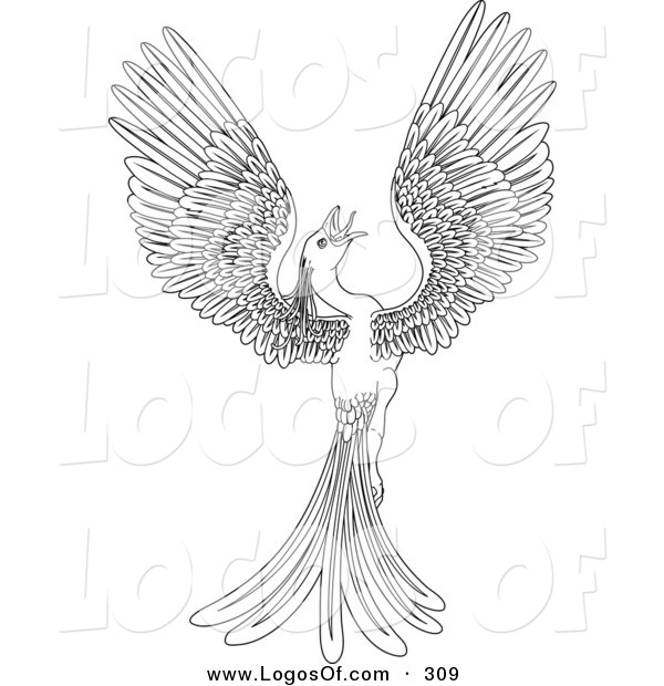 Logo Vector of a Black and White Coloring Page Outline of a Magical Flying Phoenix Bird
