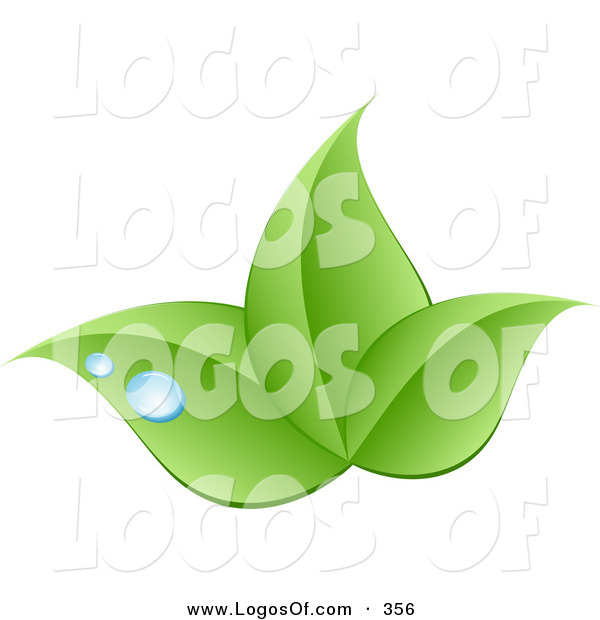 Logo Vector of a Stock Logo of a Trio of Bright Green Leaves and Blue Drops of Dew Above a Space for a Company Name and Information