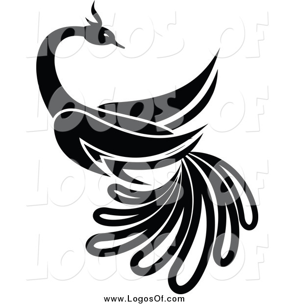 Vector Clipart of a Black and White Beautiful Bird Logo