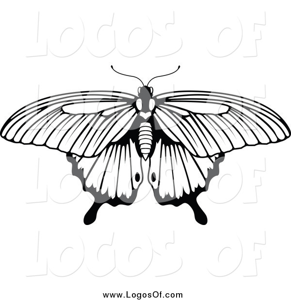 Vector Clipart of a Black and White Butterfly Nature Logo