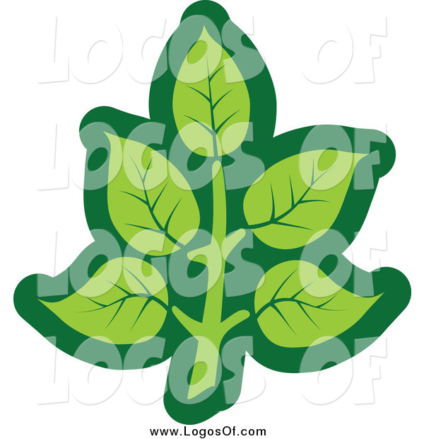 Vector Clipart of a Green Leaf Logo