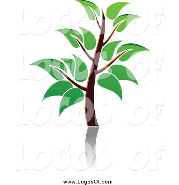 Vector Clipart of a Green Tree and Reflection Logo
